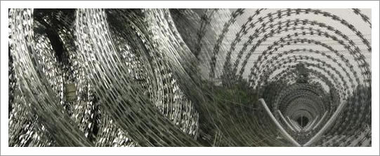 Razor Wire for Fencing